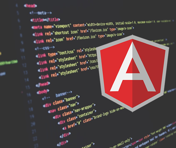 ServiceWise Developers' Blog – Angular Directive with Salesforce Field Sets